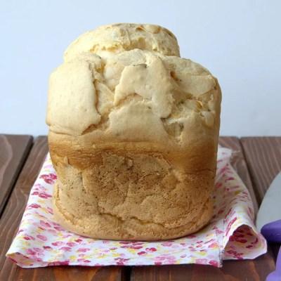 Pane in cassetta veloce, senza glutine
