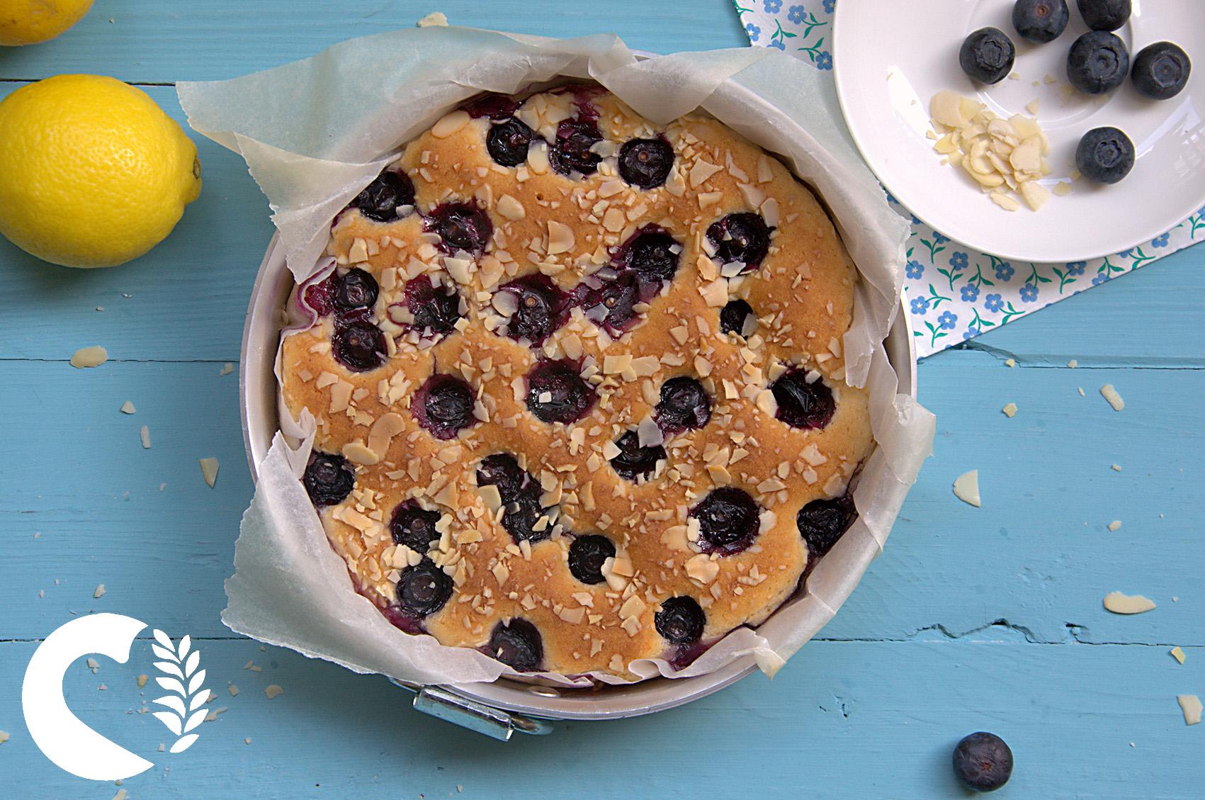 torta senza glutine vegana ai mirtilli