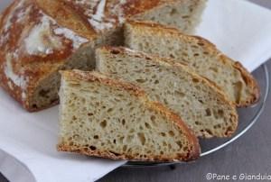 Pane semintegrale con farina di mais