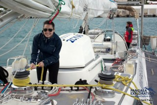 sailing bermuda the ocean cleanup
