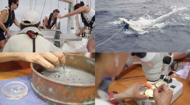 eXXpedition: Our first trawl