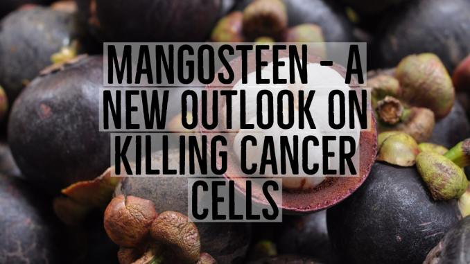 mangosteen and cancer