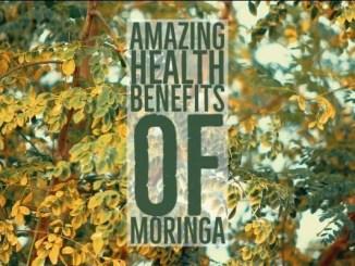 Amazing Health Benefits Moringa