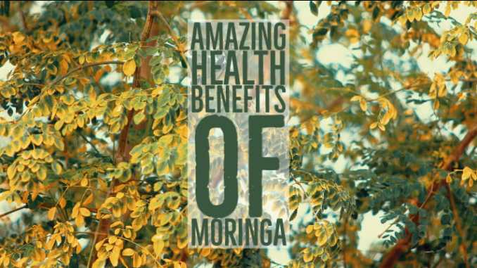 Amazing Health Benefits Moringa