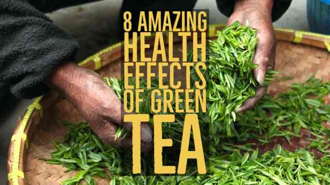 health effects of green tea