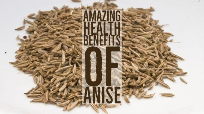 Amazing Health Benefits Anise