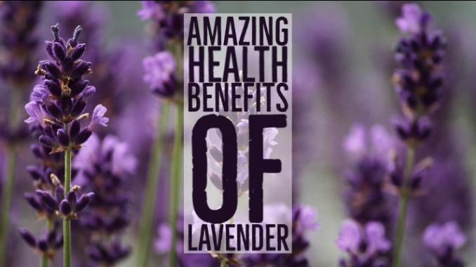 Amazing Health Benefits Lavender
