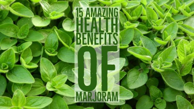 Amazing Health Benefits Marjoram