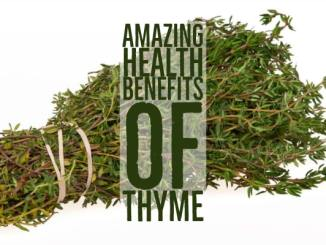 Amazing Health Benefits Thyme