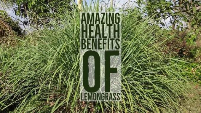 Amazing Health Benefits Lemongrass