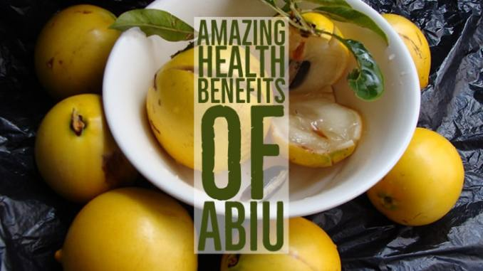 Amazing Health Benefits Abiu