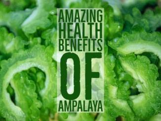Amazing Health Benefits Ampalaya