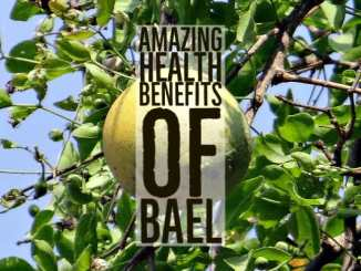 Amazing Health Benefits Bael
