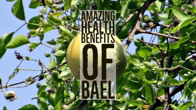 Amazing Health Benefits Bael