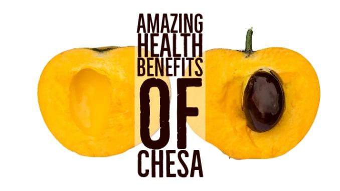 Amazing Health Benefits Chesa