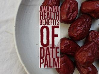 Amazing Health Benefits Dates