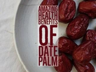 Amazing Health Benefits Dates