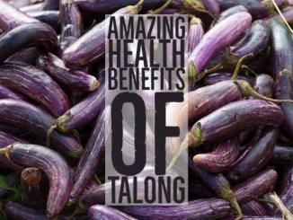 Amazing Health Benefits Talong