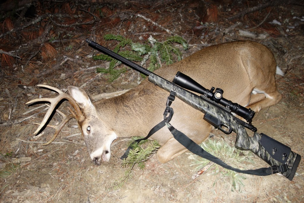 An Idaho buck taken in the last few minutes of legal shooting light.