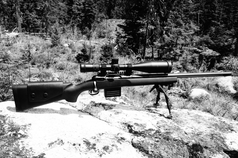 Savage Model 12 LRP: Off-The-Shelf Precision – Panhandle Precision