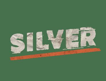 sponsor_silver