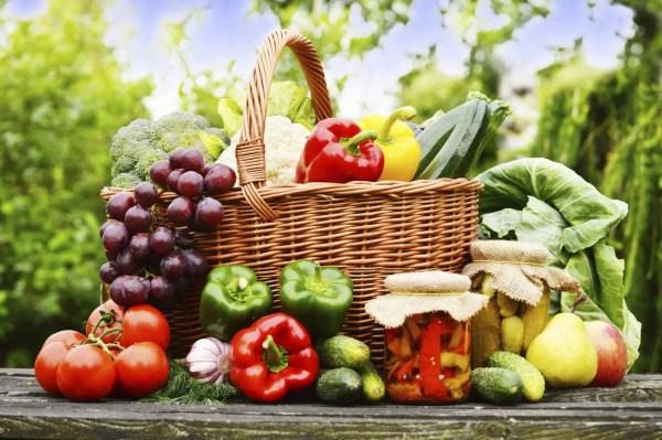 Fresh organic vegetables in the garden