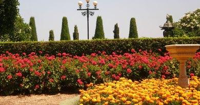 Бахайские сады. Средняя терраса