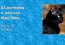 33 котенка с атолла Мяу-Мяу. Часть 10. Багира