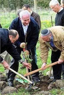 PM Israel Tanam Pohon Ghorqod
