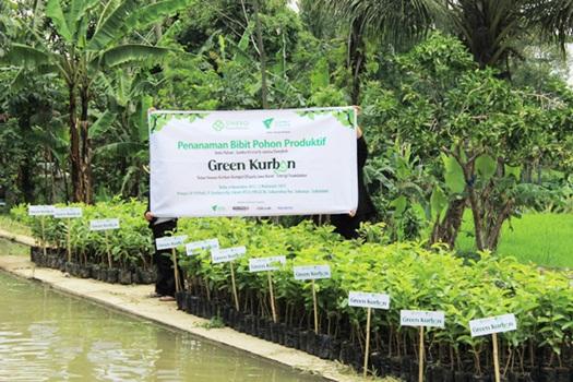 Green Kurban Sinergi Foundation 2