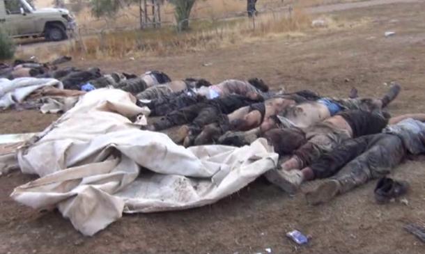 mujahidin daulah islamiyah gugur