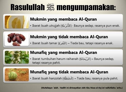 Mukmin yang Membaca Al Qur'an Ibarat Buah Utrujah yang Wangi & Manis