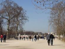 Jardin des Tuileries- parkowe aleje