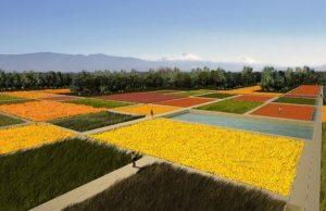 Propuesta-de-agroecosistemas-y-parcelas-de-agricultura-demostrativa