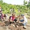 Reforestacion en la Barranca de Oblatos