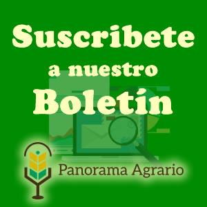 Suscríbete al Boletín Panorama Agrario