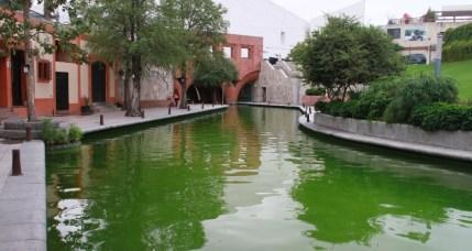 El agua del Paseo Santa Lucía luce de color verde