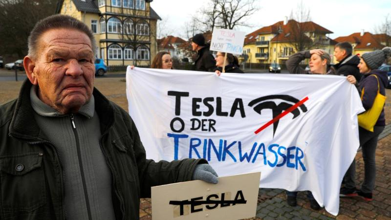 La Justicia alemana ordena a Tesla detener la tala de un bosque donde planea construir su Gigafábrica europea