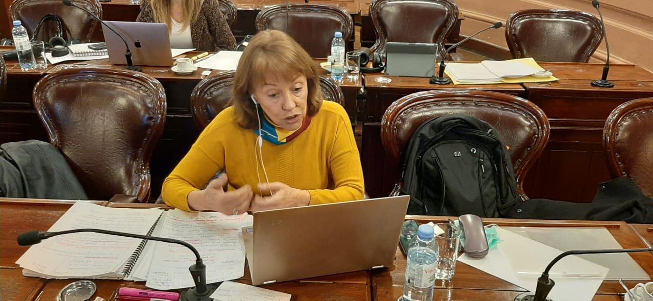 Diputados impulsan el regreso de los planes Conectar Igualdad y Argentina Conectada