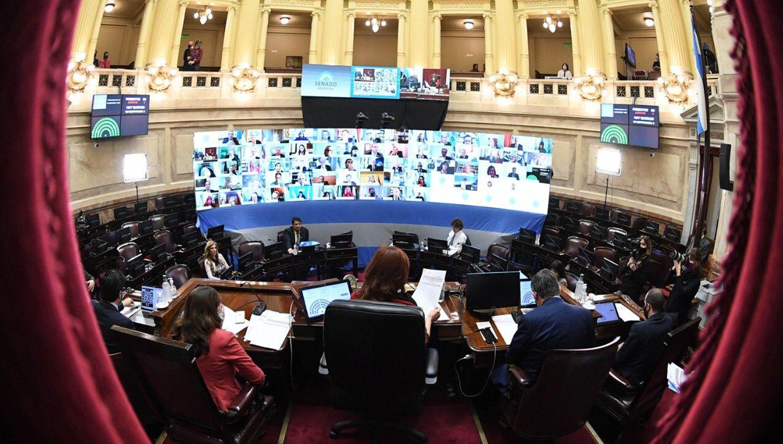 Aval en el Senado para declarar la inembargabilidad del patrimonio de las bibliotecas populares