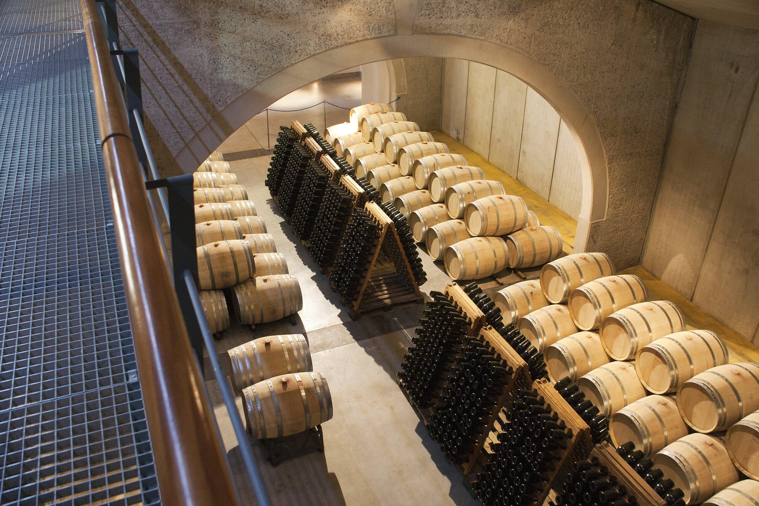 El presente y futuro de la industria vitivinícola argentina
