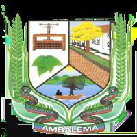 Mejor Alcalde del Tolima 24
