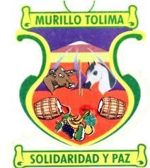 Mejor Alcalde del Tolima 68