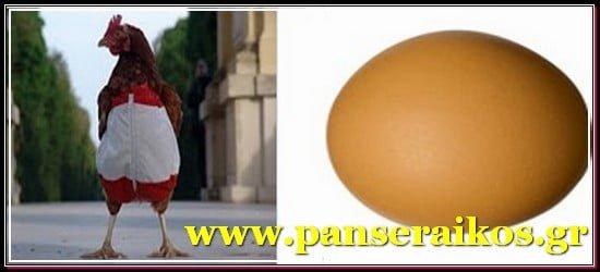 kota_aygo_panseraikos.gr_κότα_αυγό