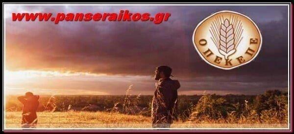 opekepe_ΟΠΕΚΕΠΕ_panseraikos.gr