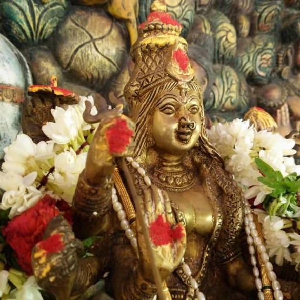 , Intensive Sadhana Reise zu Navaratri – Das Fest der göttlichen Mutter in Indien feiern