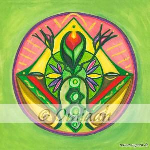 , Die heilende Kraft der Gillymaa Mandalas (Video)