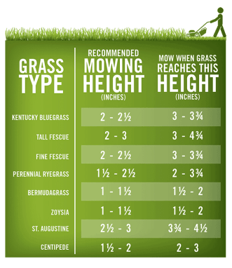 mowing heights of specific grass varieties.  From Pennington Seed