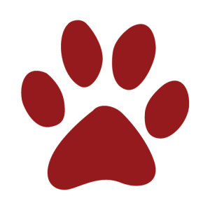 Panther paw icon