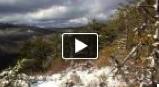 Panthertown Video Clips